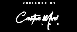 Web Design Company in Dallas